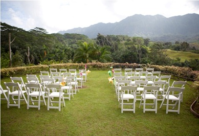 DIY Wedding Pinwheels   Much Ado About Lisa