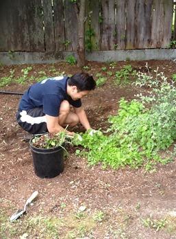 Micah in yard